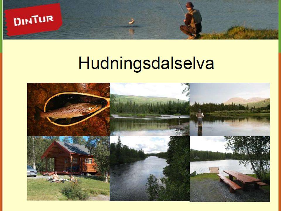 18.07.2014Finn Erlend Ødegård14 Næringsfiske – hva må til.