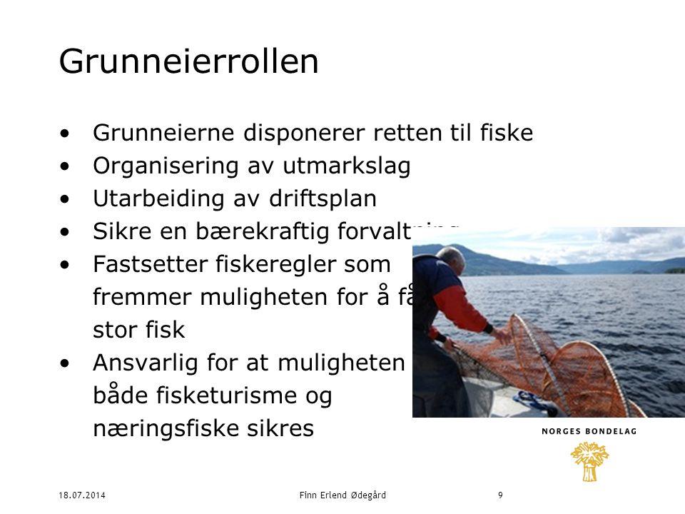 18.07.2014Finn Erlend Ødegård9 Grunneierrollen Grunneierne disponerer retten til fiske Organisering av utmarkslag Utarbeiding av driftsplan Sikre en bærekraftig forvaltning Fastsetter fiskeregler som fremmer muligheten for å få stor fisk Ansvarlig for at muligheten for både fisketurisme og næringsfiske sikres