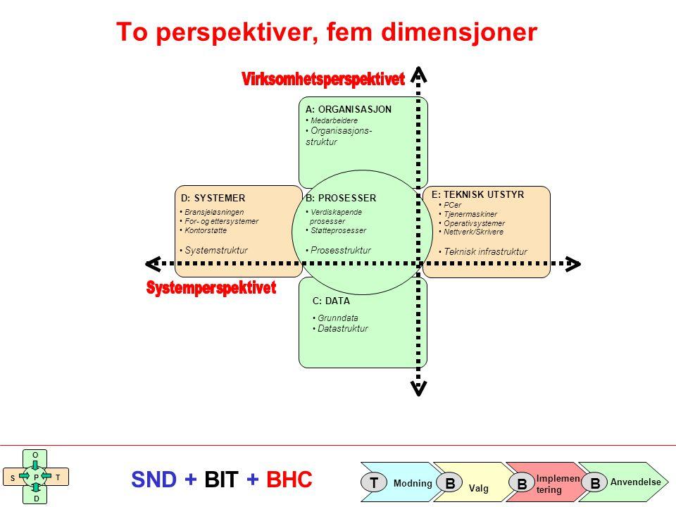 Implemen- tering Valg Anvendelse Modning T B B B S O T D P SND + BIT + BHC A: ORGANISASJON Medarbeidere Organisasjons- struktur D: SYSTEMER E: TEKNISK