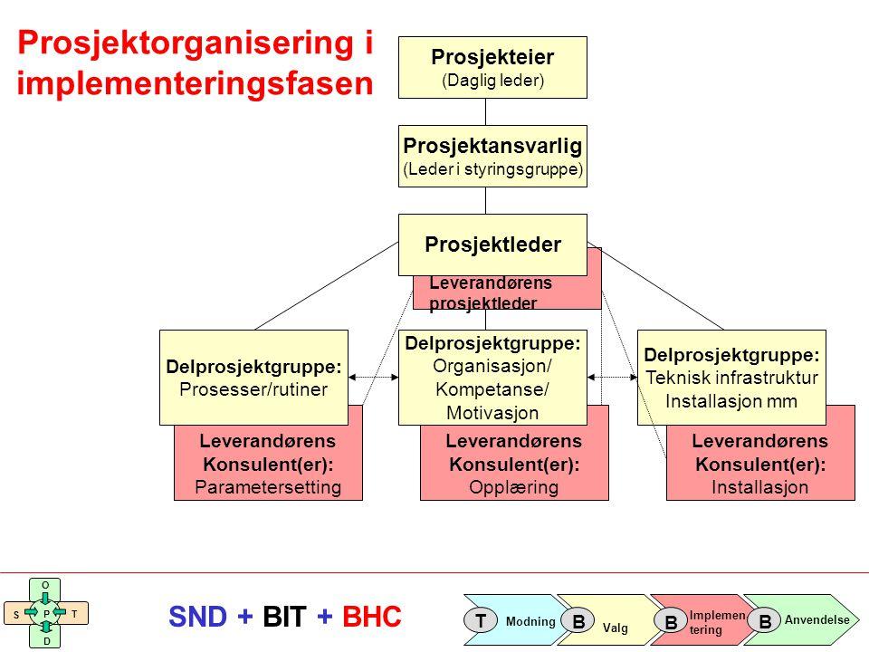 Implemen- tering Valg Anvendelse Modning T B B B S O T D P SND + BIT + BHC Leverandørens Konsulent(er): Installasjon Leverandørens Konsulent(er): Oppl