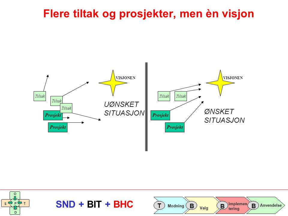 Implemen- tering Valg Anvendelse Modning T B B B S O T D P SND + BIT + BHC Tiltak Prosjekt Tiltak Prosjekt Tiltak VISJONEN Prosjekt Tiltak Prosjekt Ti