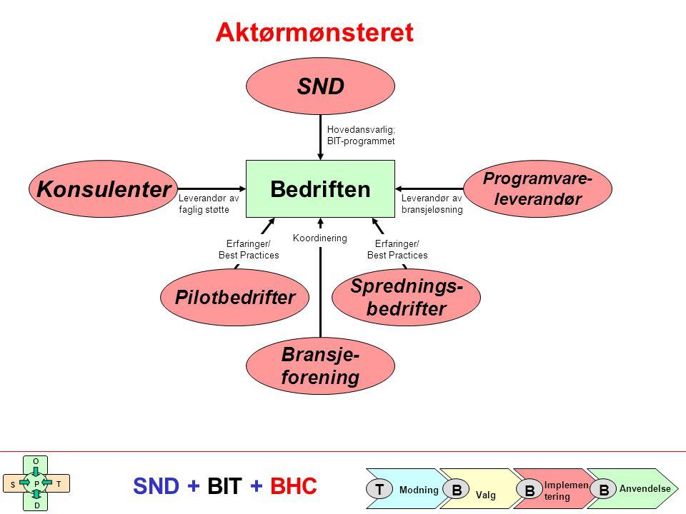 Implemen- tering Valg Anvendelse Modning T B B B S O T D P SND + BIT + BHC Aktørmønsteret Bedriften SND Hovedansvarlig; BIT-programmet Programvare- le