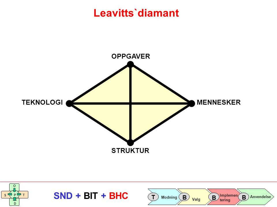Implemen- tering Valg Anvendelse Modning T B B B S O T D P SND + BIT + BHC A: ORGANISASJON Medarbeidere Organisasjons- struktur D: SYSTEMER E: TEKNISK UTSTYR C: DATA B: PROSESSER Grunndata Datastruktur Bransjeløsningen For- og ettersystemer Kontorstøtte Systemstruktur PCer Tjenermaskiner Operativsystemer Nettverk/Skrivere Teknisk infrastruktur Verdiskapende prosesser Støtteprosesser Prosesstruktur To perspektiver, fem dimensjoner