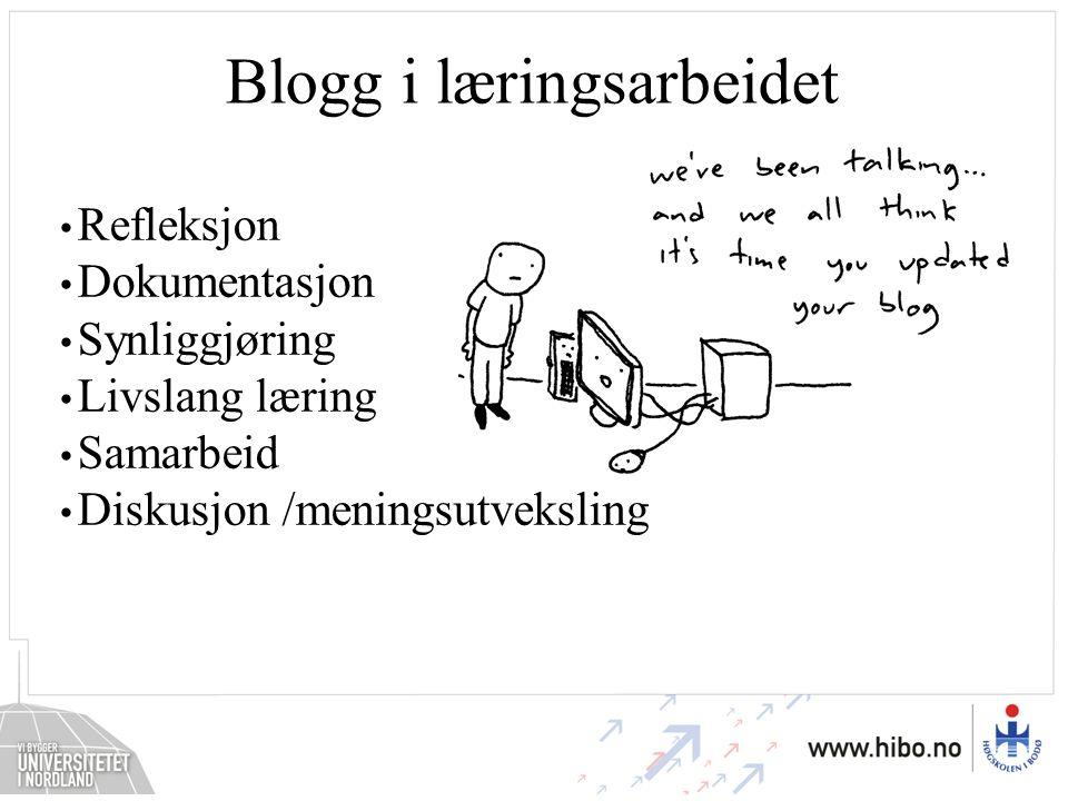 Blogg i læringsarbeidet Refleksjon Dokumentasjon Synliggjøring Livslang læring Samarbeid Diskusjon /meningsutveksling