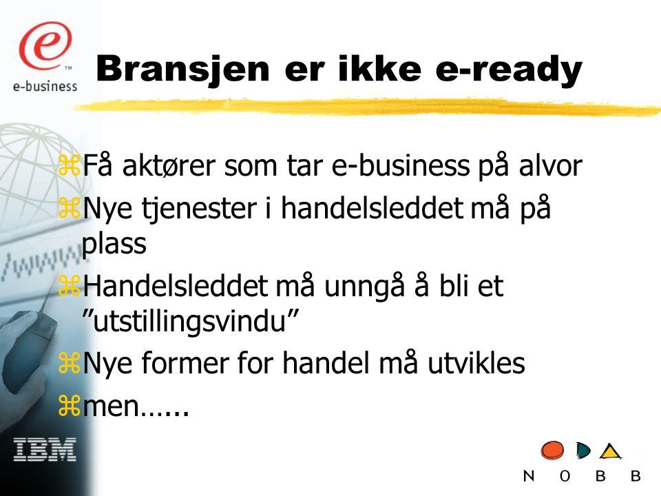 """Bransjen er ikke e-ready zFå aktører som tar e-business på alvor zNye tjenester i handelsleddet må på plass zHandelsleddet må unngå å bli et """"utstilli"""