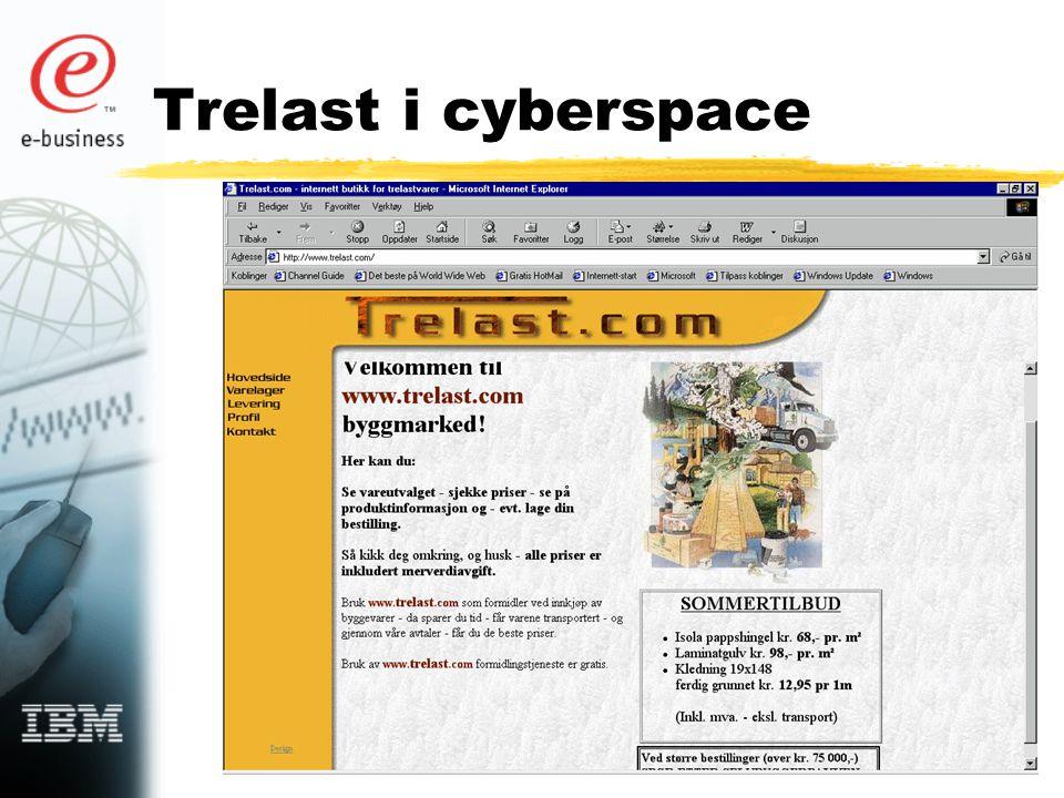Trelast i cyberspace