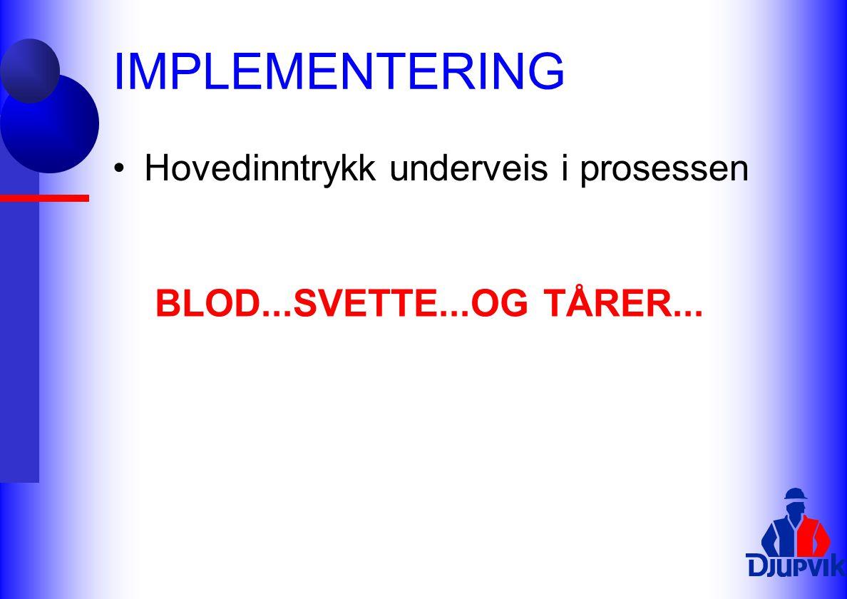 IMPLEMENTERING Hovedinntrykk underveis i prosessen BLOD...SVETTE...OG TÅRER...
