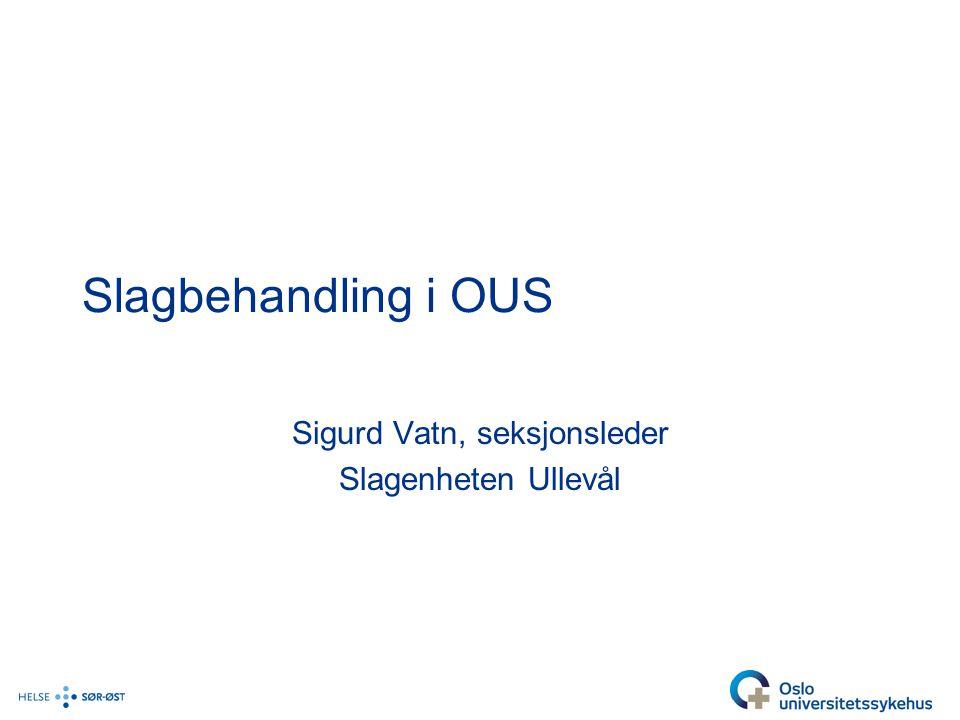 Slagbehandling i OUS Sigurd Vatn, seksjonsleder Slagenheten Ullevål