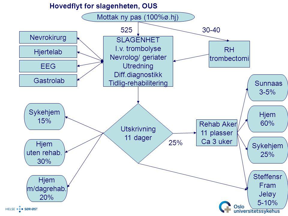 Hovedflyt for slagenheten, OUS Mottak ny pas (100%ø.hj) SLAGENHET I.v.