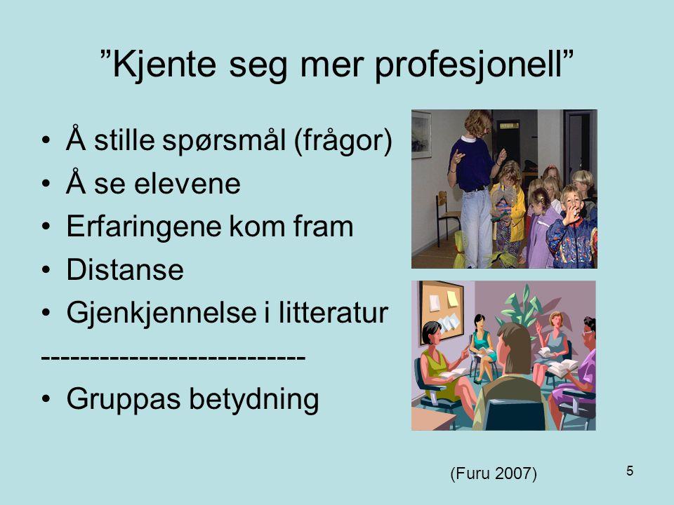 """5 """"Kjente seg mer profesjonell"""" Å stille spørsmål (frågor) Å se elevene Erfaringene kom fram Distanse Gjenkjennelse i litteratur ---------------------"""
