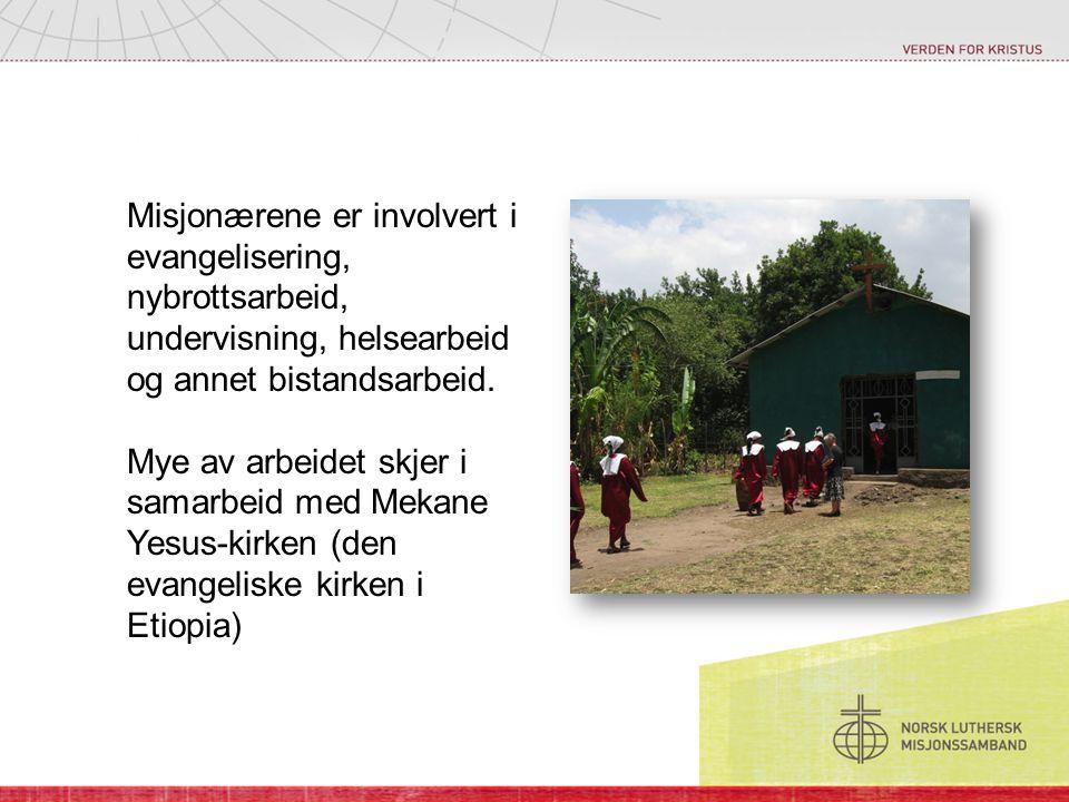 Misjonærene er involvert i evangelisering, nybrottsarbeid, undervisning, helsearbeid og annet bistandsarbeid.