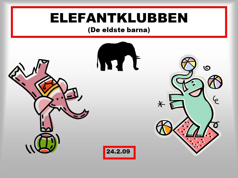 Nå var det på tide med litt informasjon om hva vi driver med på Elefantklubben Det har tatt tid å finne ut hva som var riktig måte å lære på for den gruppa vi har i år, og nå tror vi at vi har fått det til.