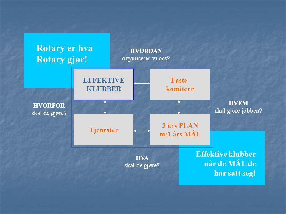 Effektive klubber når de MÅL de har satt seg! Rotary er hva Rotary gjør! HVORDAN organiserer vi oss? HVEM skal gjøre jobben? HVA skal de gjøre? HVORFO