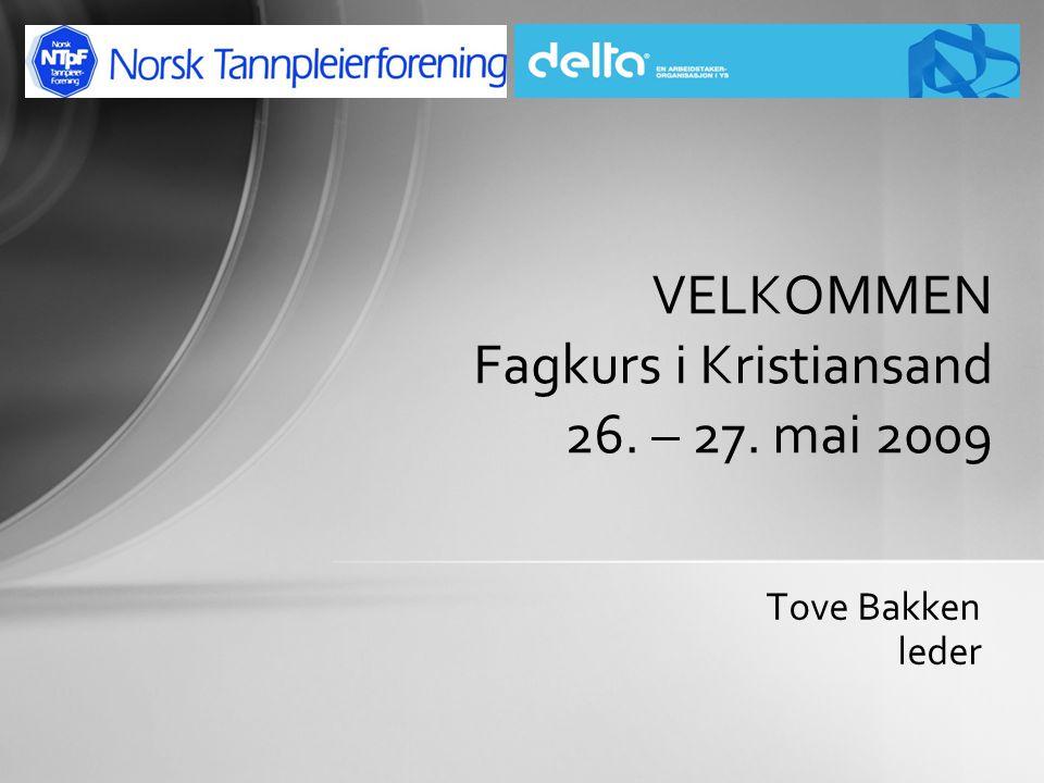 Tove Bakken leder VELKOMMEN Fagkurs i Kristiansand 26. – 27. mai 2009