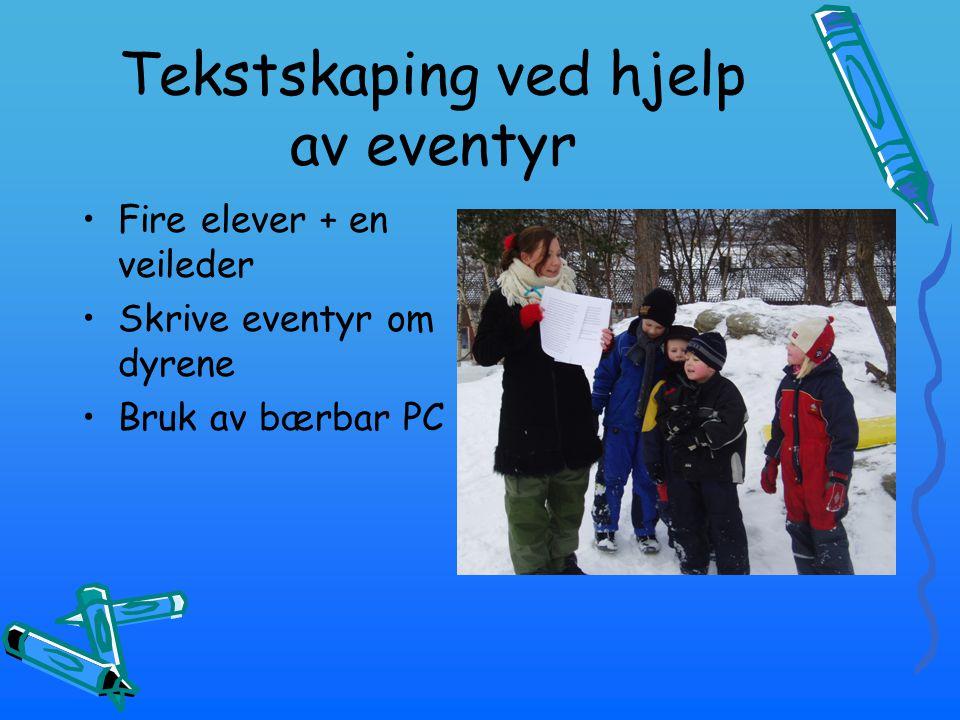 Tekstskaping ved hjelp av eventyr Fire elever + en veileder Skrive eventyr om dyrene Bruk av bærbar PC