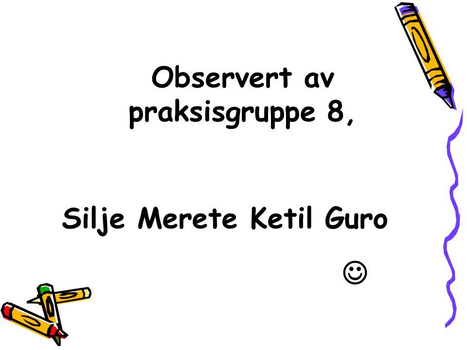 Observert av praksisgruppe 8, Silje Merete Ketil Guro