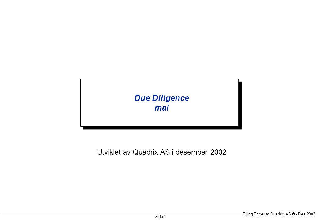 Elling Enger at Quadrix AS  - Des 2002 Side 2 Forretningsmessig gjennomgang  Gjennomgang av forretningsplan Konkurransekrefter, strategiske fortrinn og kundens kjøpekriterier Innsikt i verdidrivere og konkurransesituasjon Plass i næringskjeden.