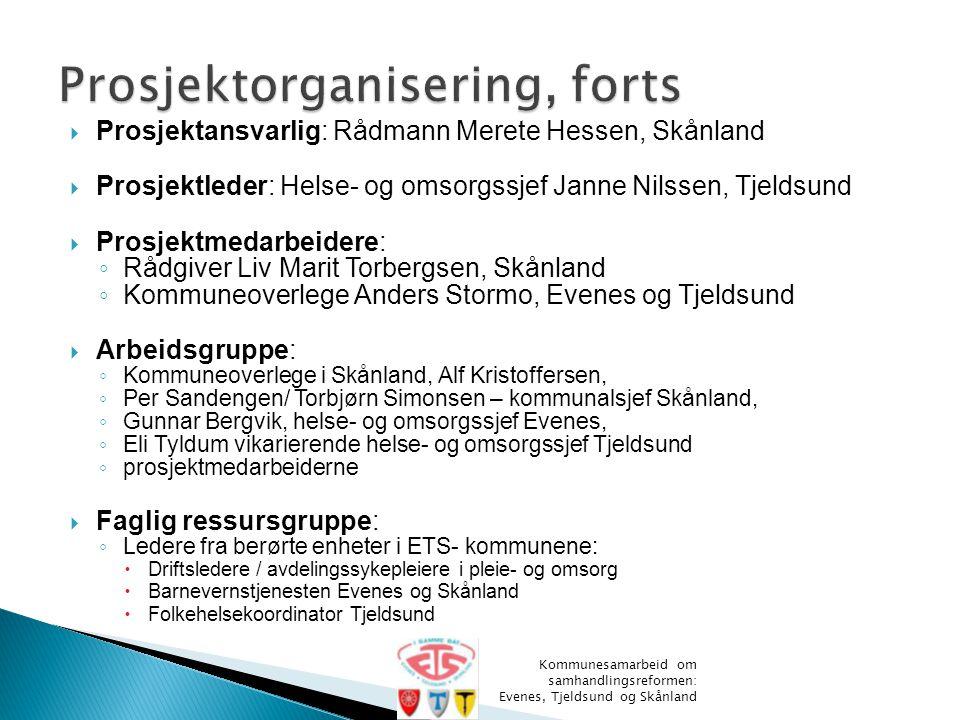  Prosjektansvarlig: Rådmann Merete Hessen, Skånland  Prosjektleder: Helse- og omsorgssjef Janne Nilssen, Tjeldsund  Prosjektmedarbeidere: ◦ Rådgive