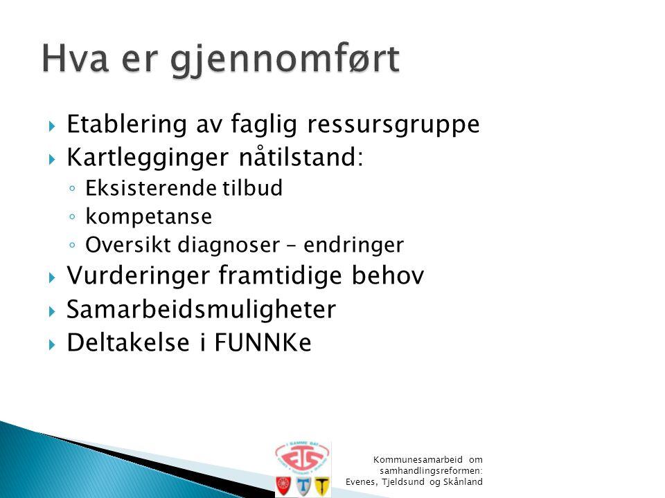  Etablering av faglig ressursgruppe  Kartlegginger nåtilstand: ◦ Eksisterende tilbud ◦ kompetanse ◦ Oversikt diagnoser – endringer  Vurderinger fra