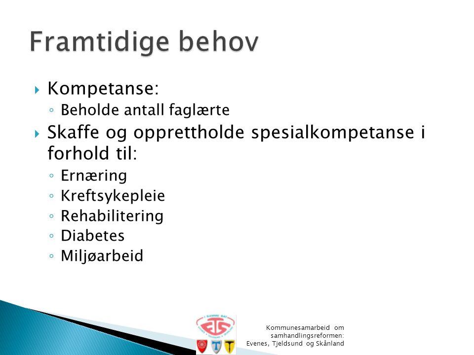  Kompetanse: ◦ Beholde antall faglærte  Skaffe og opprettholde spesialkompetanse i forhold til: ◦ Ernæring ◦ Kreftsykepleie ◦ Rehabilitering ◦ Diabe