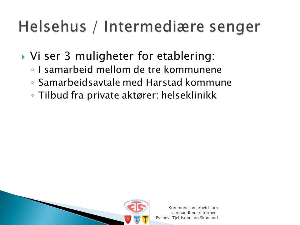  Vi ser 3 muligheter for etablering: ◦ I samarbeid mellom de tre kommunene ◦ Samarbeidsavtale med Harstad kommune ◦ Tilbud fra private aktører: helse
