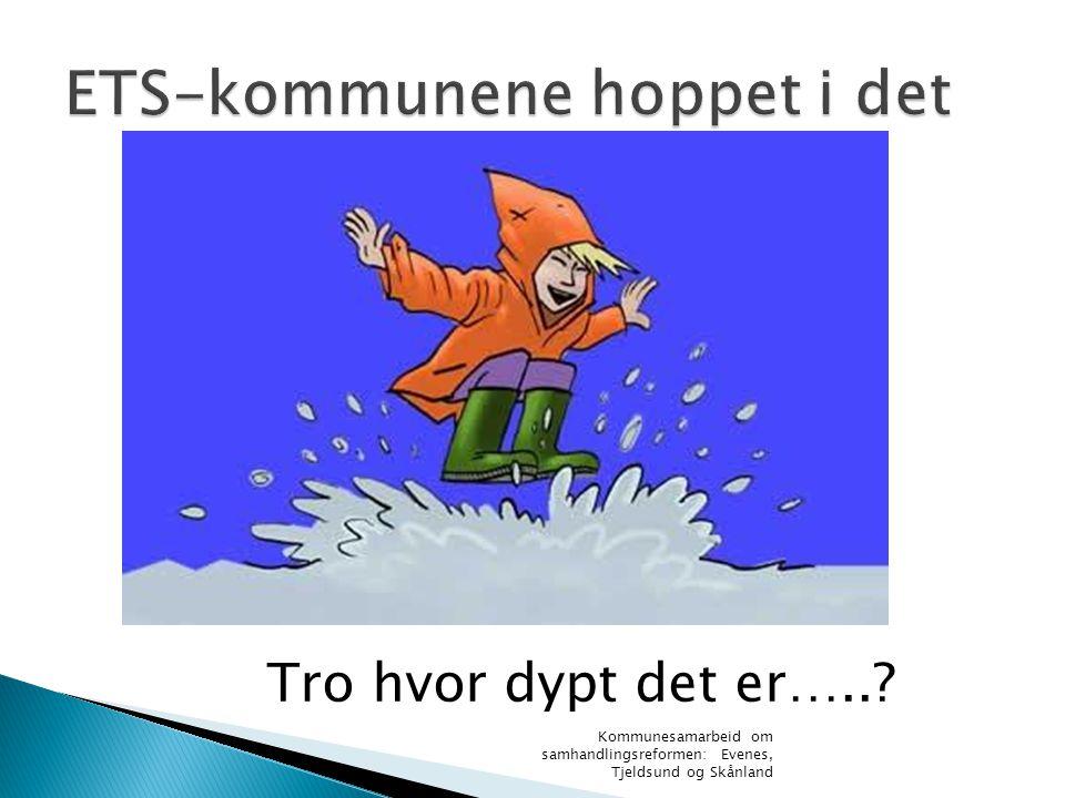Kommunesamarbeid om samhandlingsreformen: Evenes, Tjeldsund og Skånland Tro hvor dypt det er…..?