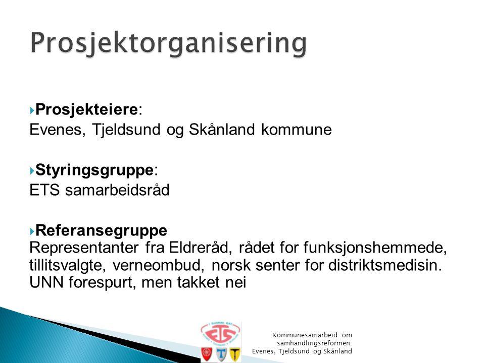  Prosjekteiere: Evenes, Tjeldsund og Skånland kommune  Styringsgruppe: ETS samarbeidsråd  Referansegruppe Representanter fra Eldreråd, rådet for fu