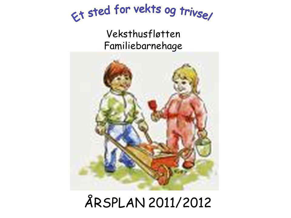Presentasjon av Veksthusfløtten familiebarnehage Veksthusfløtten familiebarnehage er en privat eid småbarns barnehage med 8 barn i alder 0-3 år.