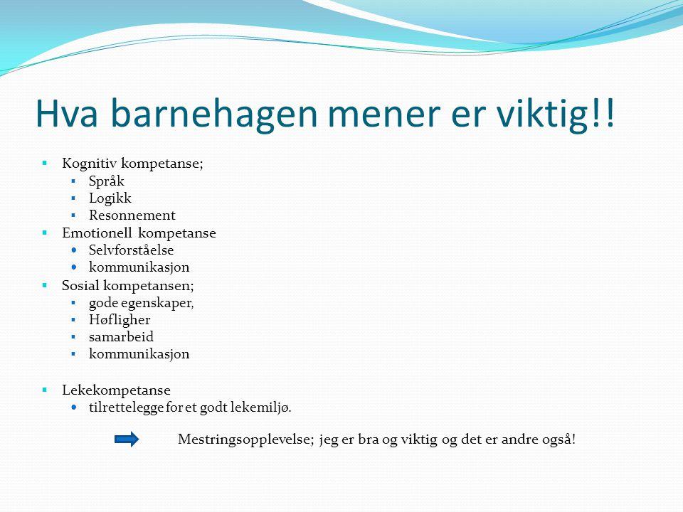 Hva barnehagen mener er viktig!!  Kognitiv kompetanse;  Språk  Logikk  Resonnement  Emotionell kompetanse Selvforståelse kommunikasjon  Sosial k