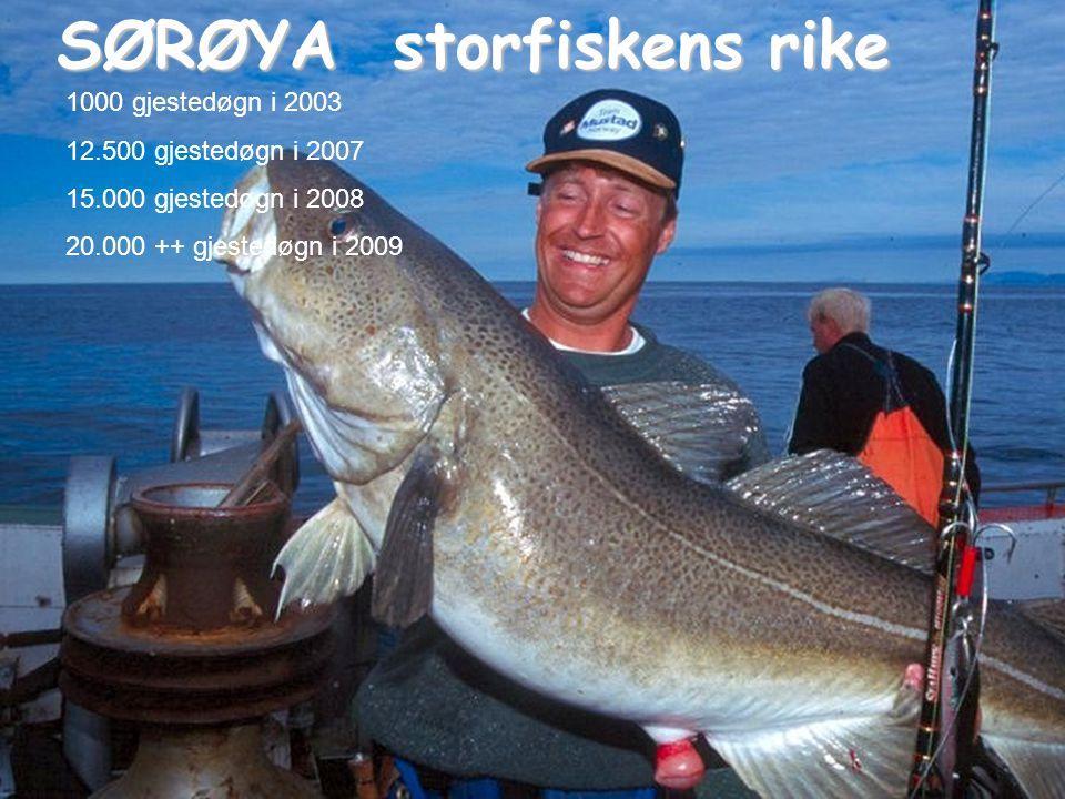 SØRØYA storfiskens rike 1000 gjestedøgn i 2003 12.500 gjestedøgn i 2007 15.000 gjestedøgn i 2008 20.000 ++ gjestedøgn i 2009
