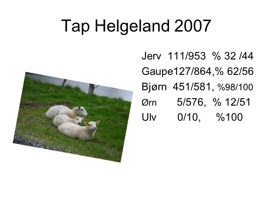Tap 2007 Indre Helgeland (bjørneområdet) Rana/Hemnes/Hattfjelldal/Grane/Vefsn Sau 582, Lam 2386 (ca 80% av tapene på Helgeland, ca 45 av tapen i Nordland) Bjørnetap 2007 = S 451/ L 581 = ca 99,5% (Rana/Hemnes/Hattfjelldal/Grane) (Leirfjord 12/Beiarn10 Tap tatt av bjørn utgjør 41% av Sauetapen i Nordland Tap tatt av bjørn økte med 58% fra 2005-2006, med 23% fra 2006-2007 Hva skjer når vi har 40-60 bjørner på Indre Helgeland????