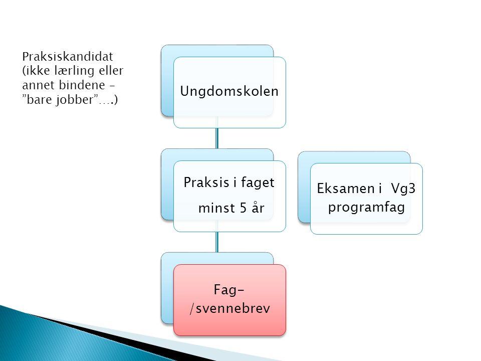 Ungdomskolen Praksis i faget minst 5 år Fag- /svennebrev Eksamen i Vg3 programfag Praksiskandidat (ikke lærling eller annet bindene – bare jobber ….)
