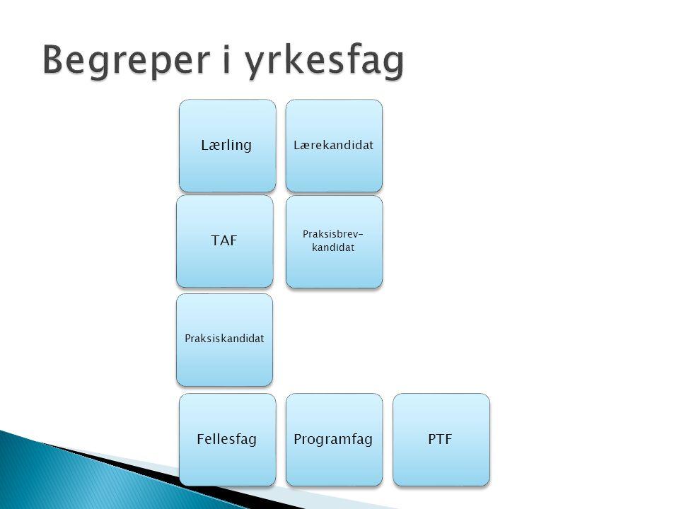 ProgramfagLærling Lærekandidat Praksisbrev- kandidat Praksiskandidat TAFFellesfagPTF