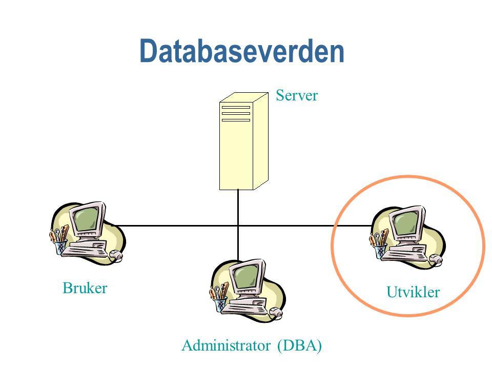 Databaseverden Bruker Administrator (DBA) Utvikler Server