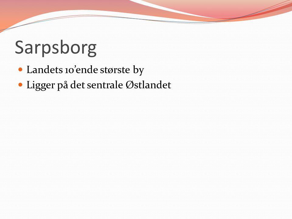 Sarpsborg boligpolitikk Gode på boligsosial forsyning Har satt boligpolitikken på kartet