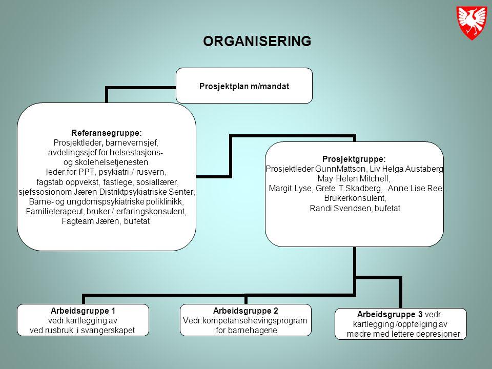 ORGANISERING Arbeidsgruppe 1 vedr.kartlegging av ved rusbruk i svangerskapet Arbeidsgruppe 2 Vedr.kompetansehevingsprogram for barnehagene Arbeidsgruppe 3 vedr.