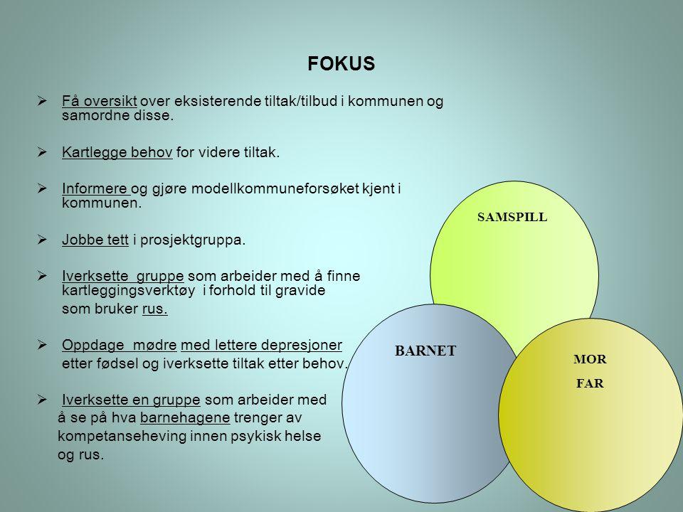 BARNET MOR FAR SAMSPILL FOKUS  Få oversikt over eksisterende tiltak/tilbud i kommunen og samordne disse.