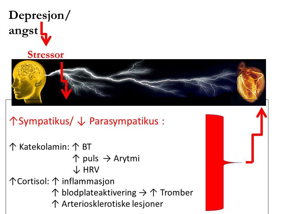 Depresjon/ angst Stressor ↑Sympatikus/ ↓ Parasympatikus : ↑ Katekolamin: ↑ BT ↑ puls → Arytmi ↓ HRV ↑Cortisol: ↑ inflammasjon ↑ blodplateaktivering →