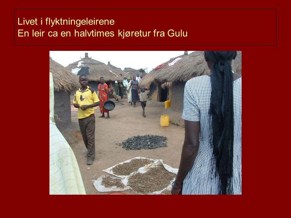 Livet i flyktningeleirene En leir ca en halvtimes kjøretur fra Gulu