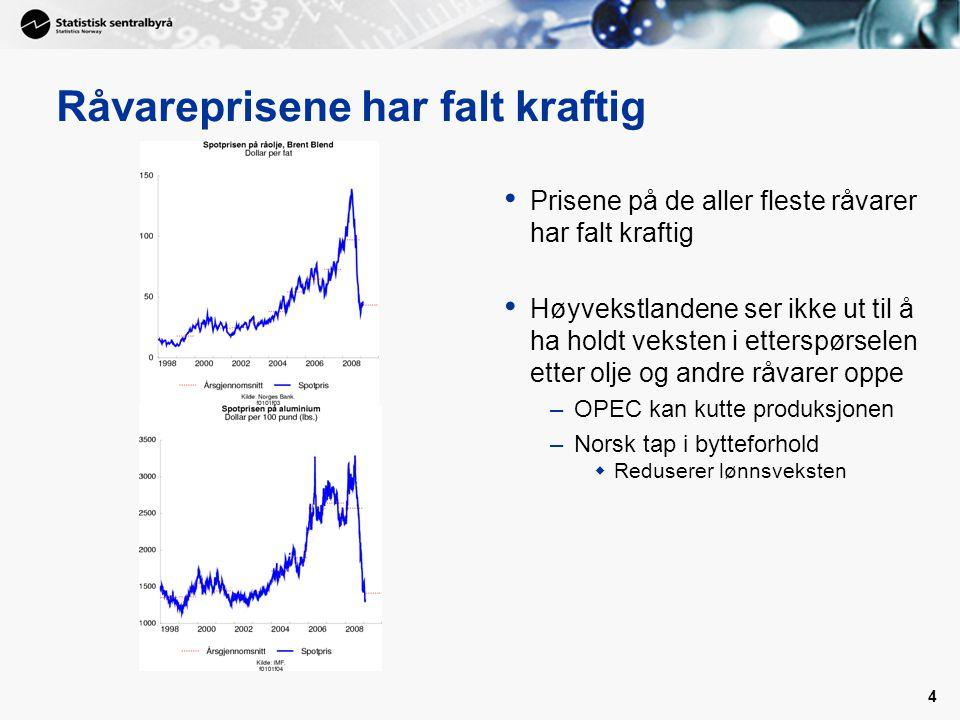 4 Råvareprisene har falt kraftig Prisene på de aller fleste råvarer har falt kraftig Høyvekstlandene ser ikke ut til å ha holdt veksten i etterspørsel