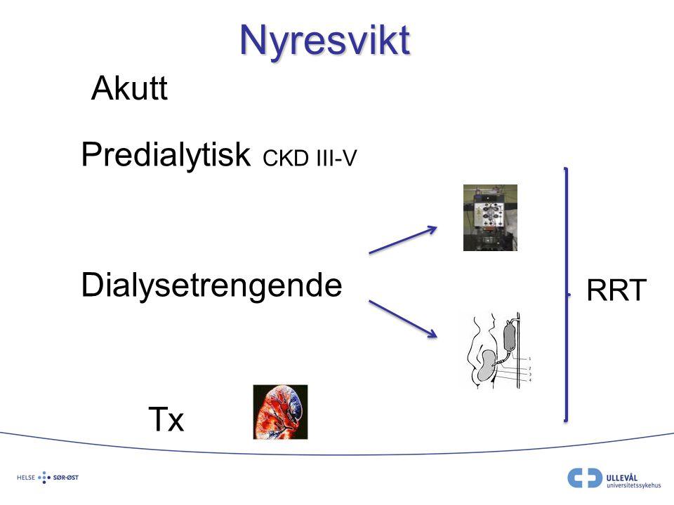 Infeksjonsforekomst predialytisk Få studier Eldre > 65 år:  Økt antall hospitaliseringer for pneumoni og sepsis.