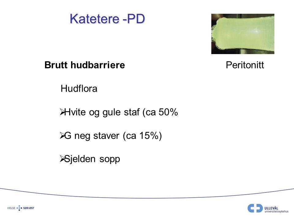 Katetere -PD Brutt hudbarriere Hudflora  Hvite og gule staf (ca 50%  G neg staver (ca 15%)  Sjelden sopp Peritonitt