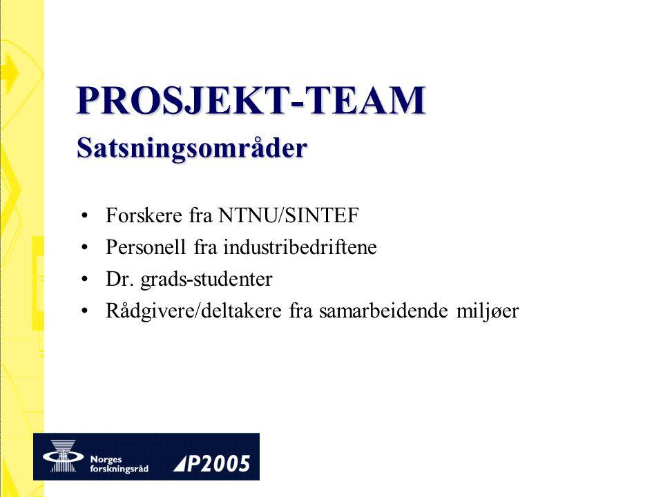 PROSJEKT-TEAM Forskere fra NTNU/SINTEF Personell fra industribedriftene Dr. grads-studenter Rådgivere/deltakere fra samarbeidende miljøer Satsningsomr