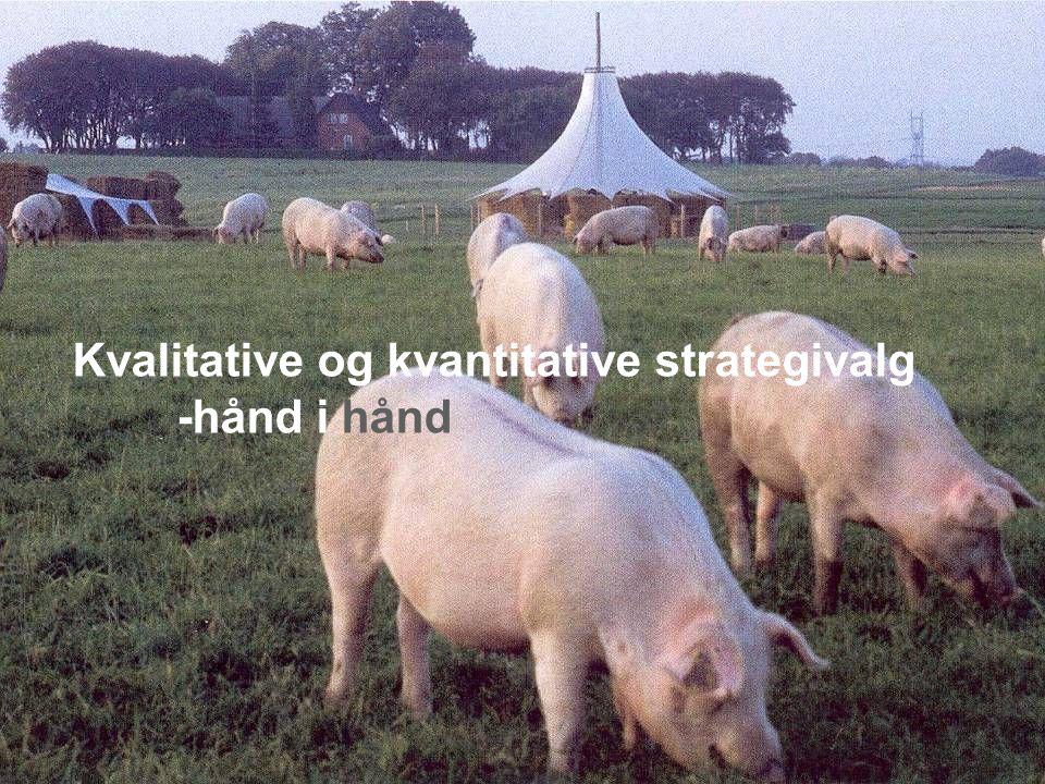 Kvalitative og kvantitative strategivalg -hånd i hånd