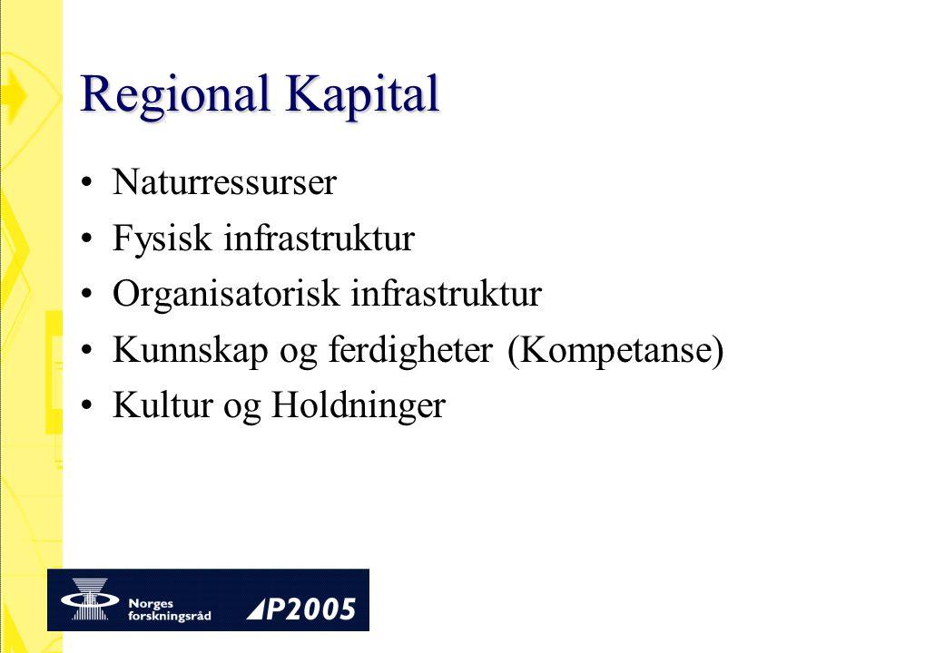 Regional Kapital Naturressurser Fysisk infrastruktur Organisatorisk infrastruktur Kunnskap og ferdigheter (Kompetanse) Kultur og Holdninger