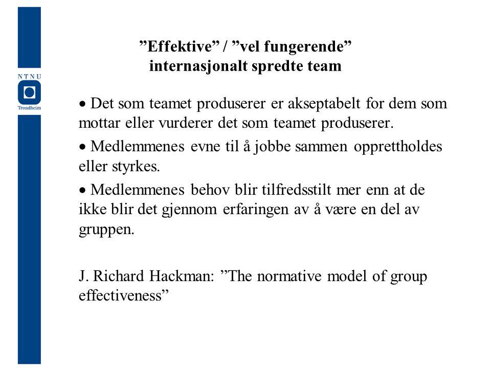 """""""Effektive"""" / """"vel fungerende"""" internasjonalt spredte team  Det som teamet produserer er akseptabelt for dem som mottar eller vurderer det som teamet"""