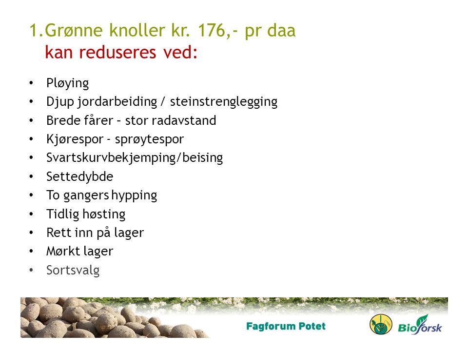 1.Grønne knoller kr. 176,- pr daa kan reduseres ved: Pløying Djup jordarbeiding / steinstrenglegging Brede fårer – stor radavstand Kjørespor - sprøyte