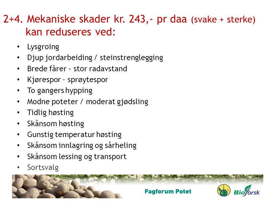 2+4. Mekaniske skader kr. 243,- pr daa (svake + sterke) kan reduseres ved: Lysgroing Djup jordarbeiding / steinstrenglegging Brede fårer – stor radavs