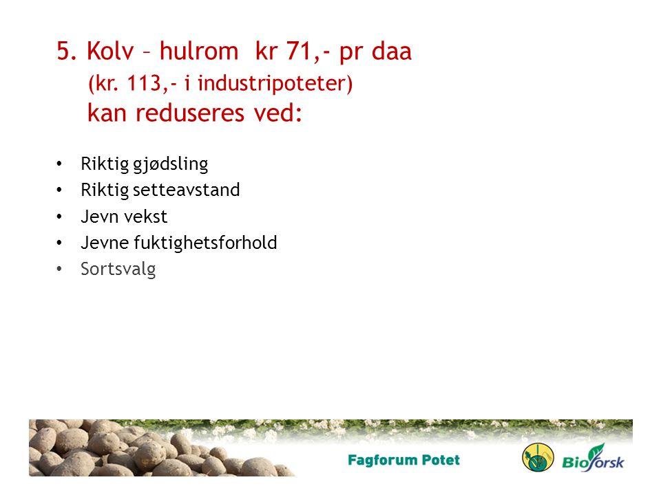 5. Kolv – hulrom kr 71,- pr daa (kr. 113,- i industripoteter) kan reduseres ved: Riktig gjødsling Riktig setteavstand Jevn vekst Jevne fuktighetsforho
