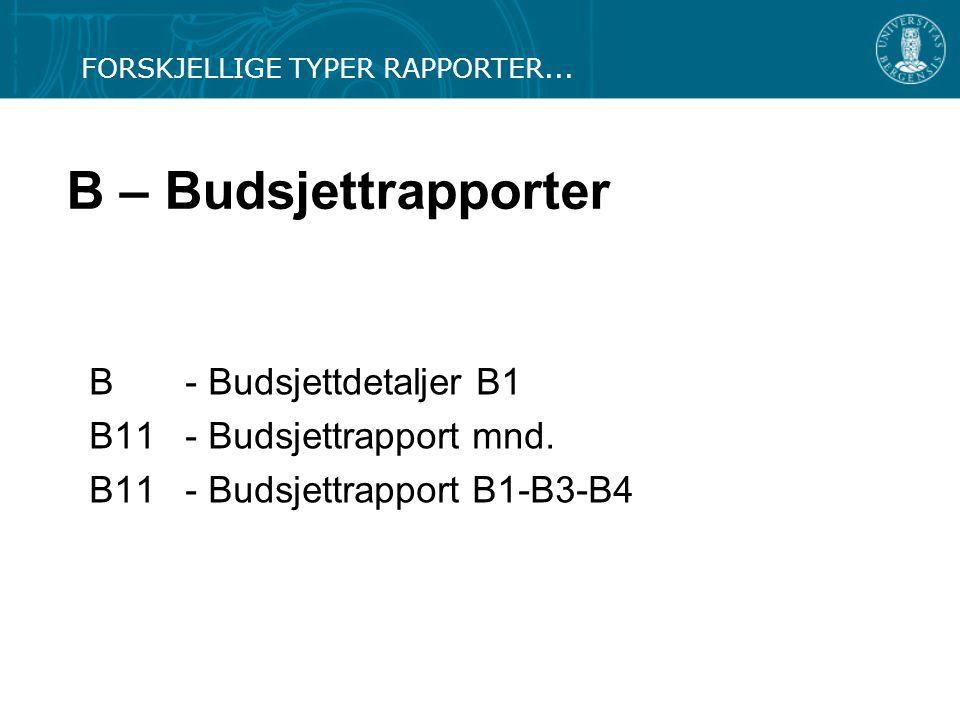 B – Budsjettrapporter B - Budsjettdetaljer B1 B11 - Budsjettrapport mnd. B11- Budsjettrapport B1-B3-B4 FORSKJELLIGE TYPER RAPPORTER...